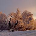 Northern Light by Jeremy Rhoades