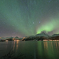 Northern Lights Experience I by Tom Kiil