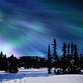 Northern Lights I by Gigi Ebert