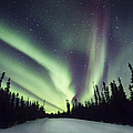 Northern Lights II by Gigi Ebert
