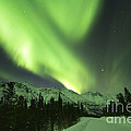 Northern Lights Over Annie Lake Road by Philip Hart