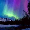 Northern Lights by Shere Crossman