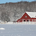 Northern Michigan Country Winter by Teresa McGill
