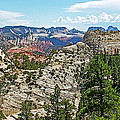 Northgate Peaks Trail From Kolob Terrace Road In Zion National Park-utah by Ruth Hager