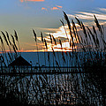 Ocean City Sunset At Northside Park by Bill Swartwout Fine Art Photography