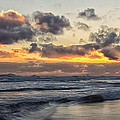 Northumbrian Coast by David Pringle