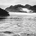 Inside Passage Mist by Kate McKenna