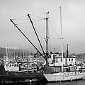 Northwind Docked by Melinda Ledsome