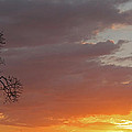 Nosara Playa Pelada Costa Rica Sunsets by Joseph Semary