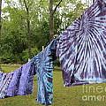 Not Fade Away - Spiral Dyes by Susan Carella