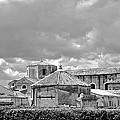 Noto - Sicily by Donato Iannuzzi