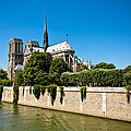 Notre Dame Cathedral And The Seine by Anthony Doudt