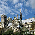 Notre Dame Cathedral by Ann Horn