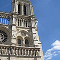 Notre Dame Cathedral Paris Tower by Stephanie Hunter
