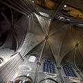 Notre Dame Ceiling South by Evie Carrier