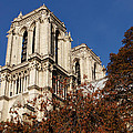 Notre-dame De Paris - French Gothic Elegance In The Heart Of Paris France by Georgia Mizuleva