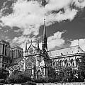 Notre Dame De Paris by Maj Seda