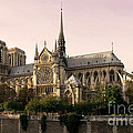 Notre Dame De Paris by Phill Petrovic