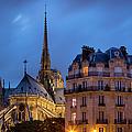 Notre Dame Dusk by Brian Jannsen