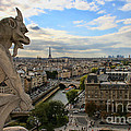 Notre Dame Gargoyle by Crystal Nederman