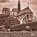 Notre Dame In Sepia by Georgia Fowler