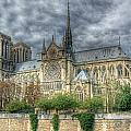 Notre Dame by Michael Kirk