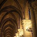 Notre Dame Paris France 2 by Bridget Brummel