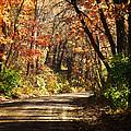 November Colors 5 by John Anderson