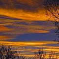 November Skies by Karen Briggs