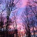 November Sunset by Charles Ford