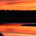 November Sunset by Denyse Duhaime