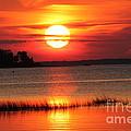 November Sunset by John Doble