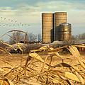 November Winds by Doug Kreuger