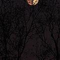 November's  Moon II by Ola Allen