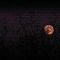 November's Moon by Ola Allen