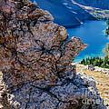 Nub Ridge by Tracy Knauer