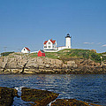 Nubble In The Day 20x30 by Geoffrey Bolte