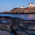 Nubble Light Along Maine's Rugged Coast York Beach Maine by Dawna Moore Photography