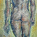 Nude Brunet by Raija Merila