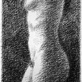 Nude Female Torso Drawings 6 by Gordon Punt