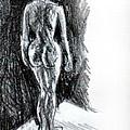Nude  by Paul Sutcliffe