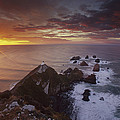 Nugget Point Lighthouse At Sunrise by Colin Monteath