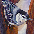 Nuthatch by Janet Zeh