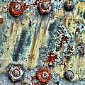 Nuts And Rivets  by Olivier Le Queinec