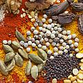 Nuts Pulses And Spices by Paul Cowan