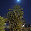 Nuweiba By Night Sinai Egypt by Colette V Hera  Guggenheim
