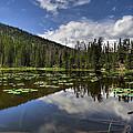 Nymph Lake by Scott Wood