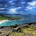 Oahu Hawaii South Shore Oil by Wayne Wood