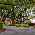Oak Alley Slave Quarters by Steve Harrington