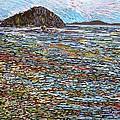 Oak Bay - Low Tide by Michael Graham